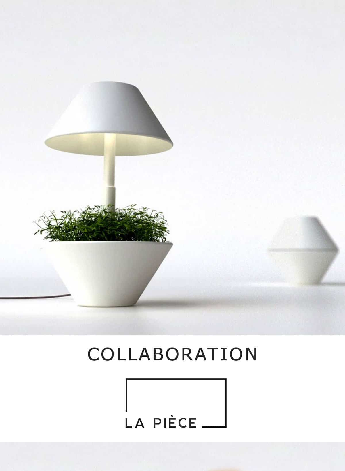Collaboration-LaPiece-lumiere-et-plante